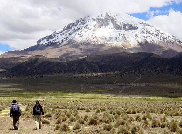 sajama mountain bolivia